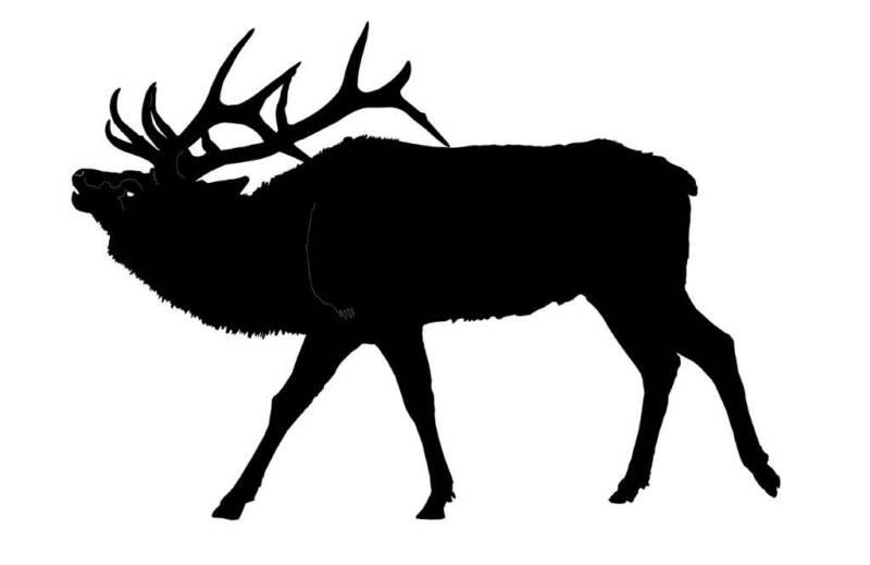cow elk clipart - photo #20